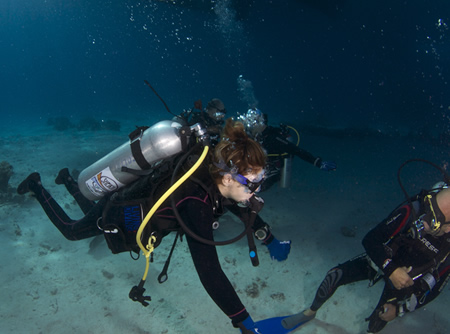 Services for disabled Divers